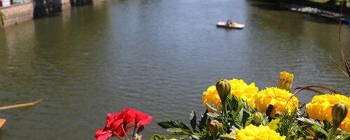 برنامج العطلة الصيفية لمدينة توبنغن